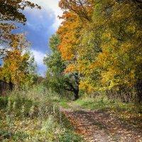 Осенняя ностальгия... :: Евгения Кирильченко