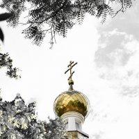 Золотой купол :: Алексей Михайленко