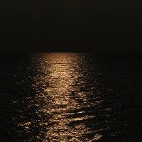 Лунный свет! :: Андрей