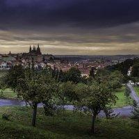 Прага :: Марат Закиров