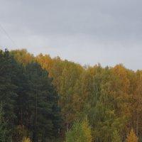 осень в городе2 :: Alexandr Staroverov