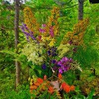 Букет из леса :: Сергей Чиняев