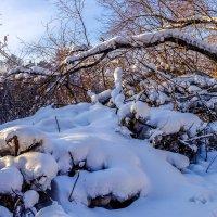 И выпал снег... :: Rafael