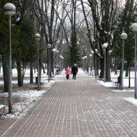 прогулка :: Леонид Натапов