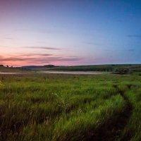Вечерняя прогулка :: Юлия Егорова