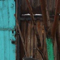 Немного из жизни деревни :: Tanyana Zholobova