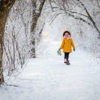 Зимняя зима... :: nataliya korchma