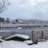 Сухум зимой :: Анна Тесликова