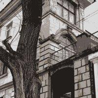 Графика города :: Елена Даньшина