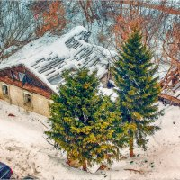 старый дом :: Андрей Иванов