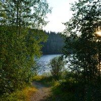 Тропинка к озеру :: Ирина Михайловна