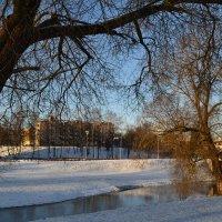 Река зимой. :: zoja