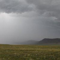 дождик :: Lilija Philipp