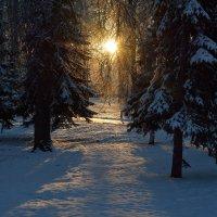 Зимний этюд 15 :: Константин Жирнов