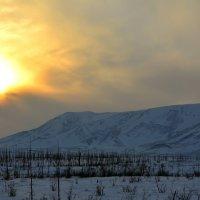 Северное Солнце... :: Витас Бенета