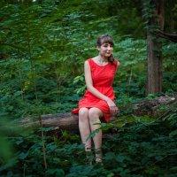 в лесу... :: Кристина Волкова(Загальцева)