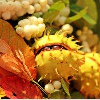 Осеннее солнце :: Лидия (naum.lidiya)