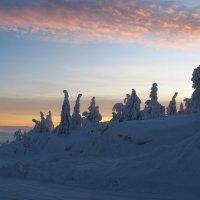 В Лапландии :: Елена Смолова