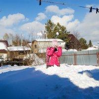 снег и солнце :: Света Кондрашова