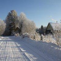 Зимняя дорога :: Nikolay Shumilov