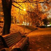 Ночь, фонарь, скамейка :: Фролов Владимир Александрович