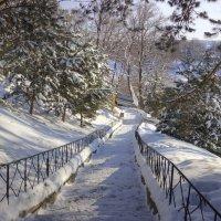 Лестница к храму :: Владимир