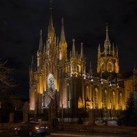 Кафедральный Собор Непорочного Зачатья Пресвятой Девы Марии :: Ирина Терентьева