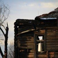 Заброшенный дом :: Karina Sholokhova