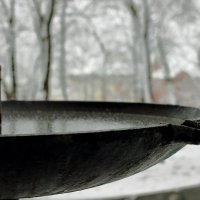 Зимняя зарисовка :: Юрий Гайворонский