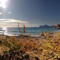 солнечный берег Киммерии :: viton