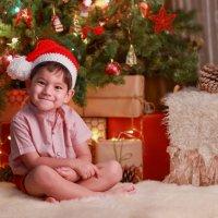 Новогодняя :: Elena Максимова