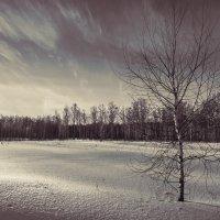 Одиночество... :: олег