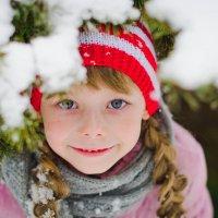 снежные слезинки :: Катерина Терновая