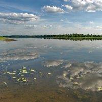 Окский  пейзаж :: Валерий Толмачев