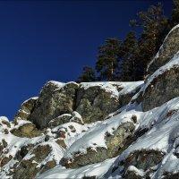 Сосны и скалы :: Николай
