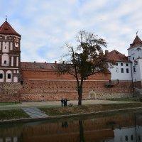 Мирский замок :: Paparazzi