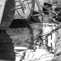 Котик-морячок :: Елена Селина