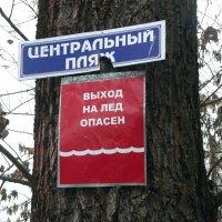 а вдруг мороз :: Леонид Натапов