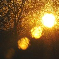 закат через окно :: Леонид Натапов