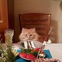 В ожидании Нового Года! :: Владимир Волик