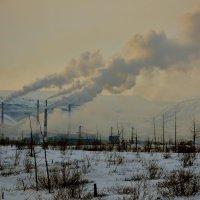 Борьба с экологией... :: Витас Бенета