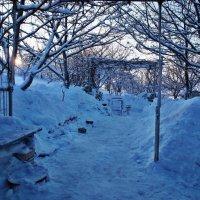 Экскурсия в Гадюкино зимой (32) :: Александр Резуненко