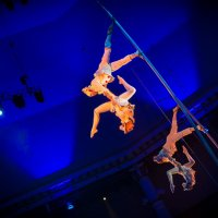 Цирк! :: Алёна Райн