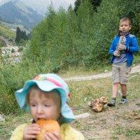 Последний бутерброд... :: Mila .