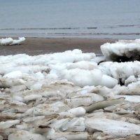 Финский залив,февраль :: veera (veerra)