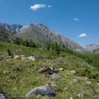 тропа в горы :: Константин Шабалин
