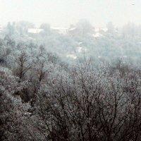 морозное утро :: Леонид Натапов
