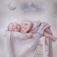 Спокойной ночи :: Наталия Панченко