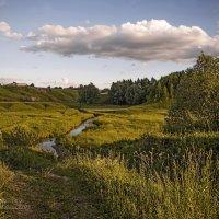 Теплое лето :: Владимир Макаров