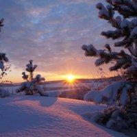 снежный закат :: Сергей